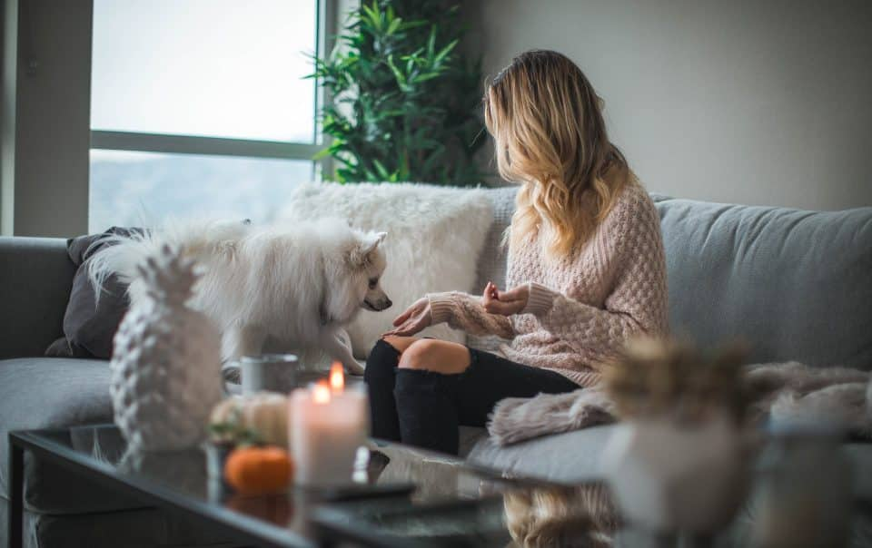 lady at home with dog needs home insurance